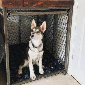 Bespoke Dog Crate Bar Table, Reclaimed Wood, Steel Frame With Roller Door, Industrial, Handmade, Sliding Door